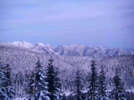 Grouse Mountain - Lights