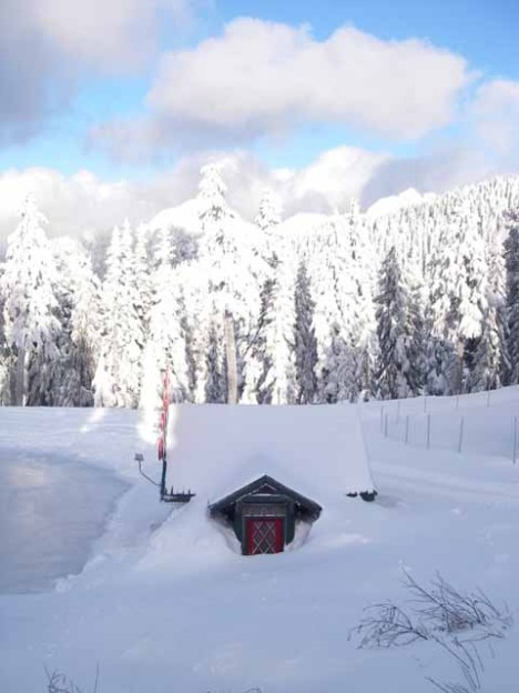 Grouse Mountain @ 10 am December 31, 2008