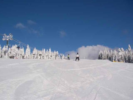 Grouse Mountain - The Cut @ 10 am December 31, 2008