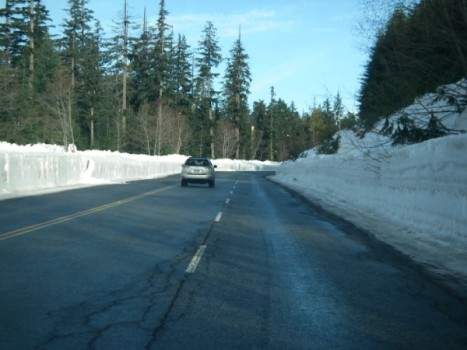 January 15 - 9 am Cypress Mountain Road